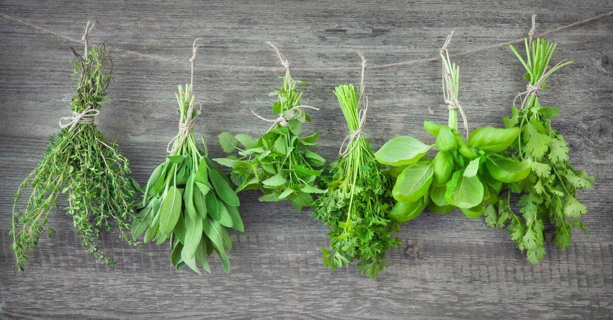 Useful way to grow an herb garden.