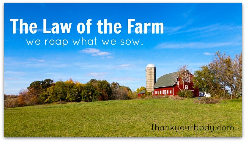 The Law of the Farm: We reap what we sow