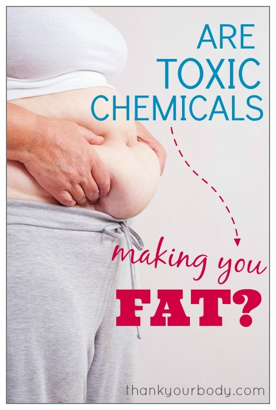 Are toxic chemicals making you fat? Learn how to combat this often forgotten weight issue. www.thankyourbody.com