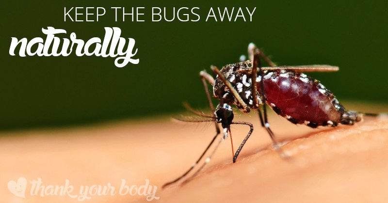 Don't be bothered by the bugs this summer! Try this