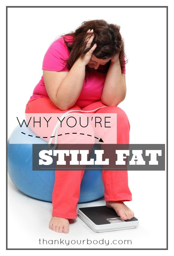 Why are you still fat? The answer might surprise you. www.thankyourbody.com