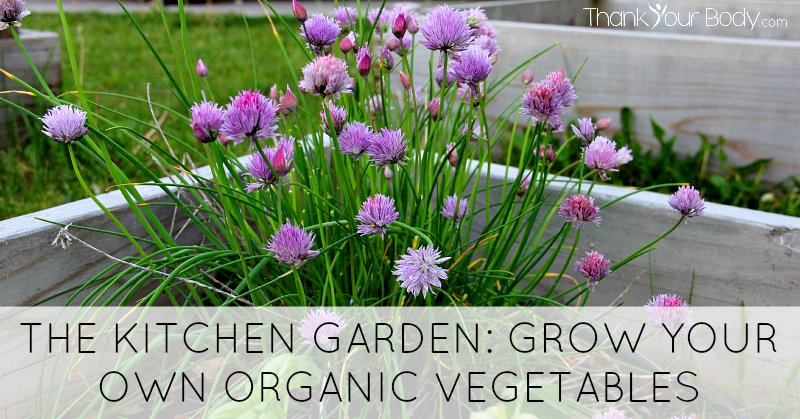 The kitchen garden is the perfect place to grow your own organic vegetables. Tips for getting started on your own organic kitchen garden, wherever you live!