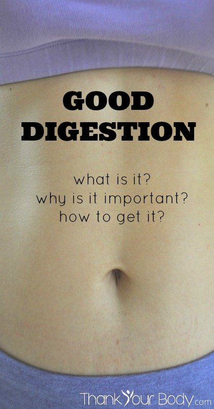 Good Digestions: What is it? Why is it important? How to get it?