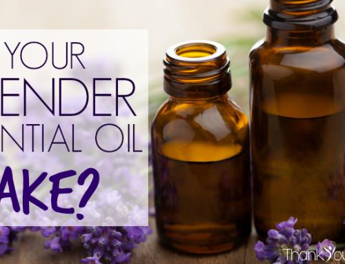 Beware of Fake Lavender Essential Oils