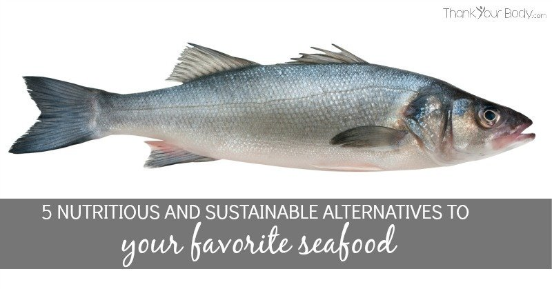 5 Nutritious and Sustainable Alternatives to your Favorite Seafood