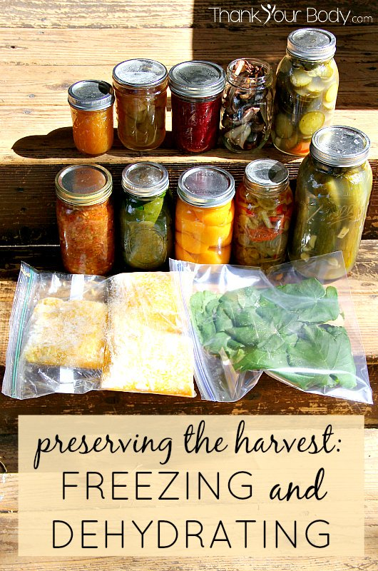 Got produce? Here's how to preserve it through freezing and dehydrating. Part 2 of a 2 part series on food preservation.