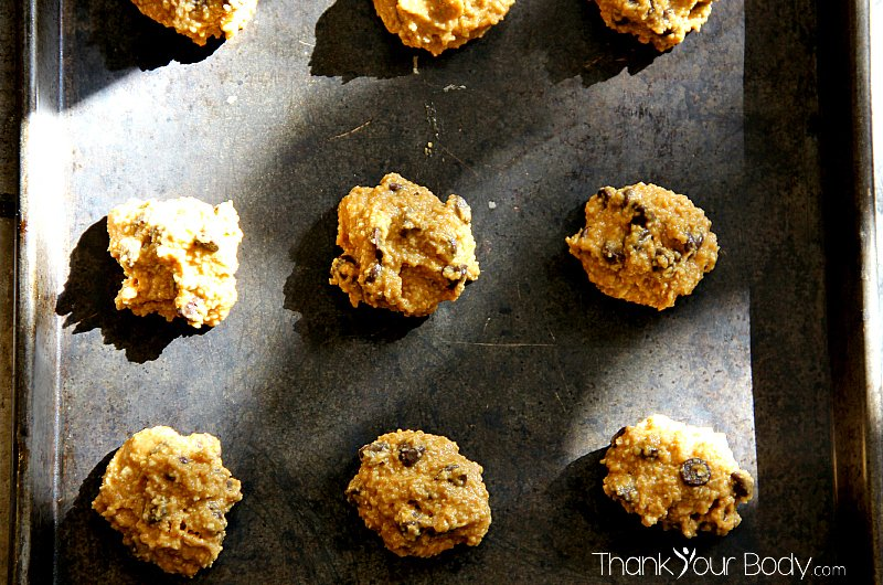 These chewy and delicious pumpkin chocolate chip cookies are made of oat flour...healthy, easy to make and the texture is amazing!