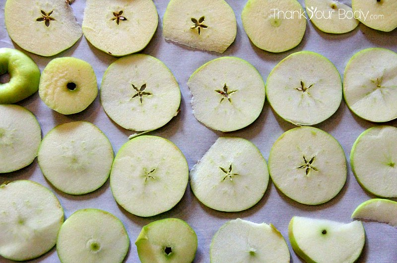 These crispy apple chips are organic, easy to make, and so much fun to eat!