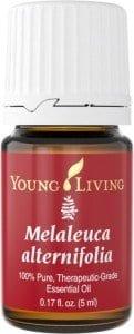 Young-Living-Malaleuca-Alternifolia-Essential-Oil