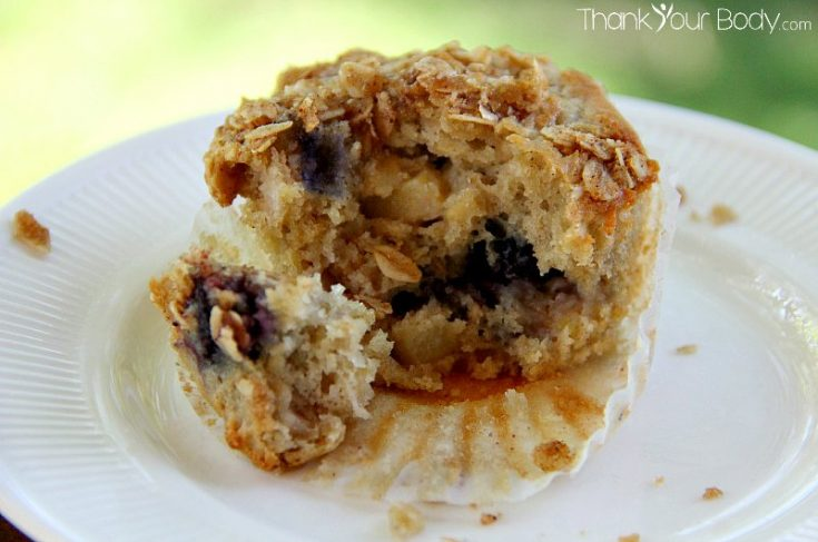 Gluten Free Blueberry Apple Oatmeal Muffins